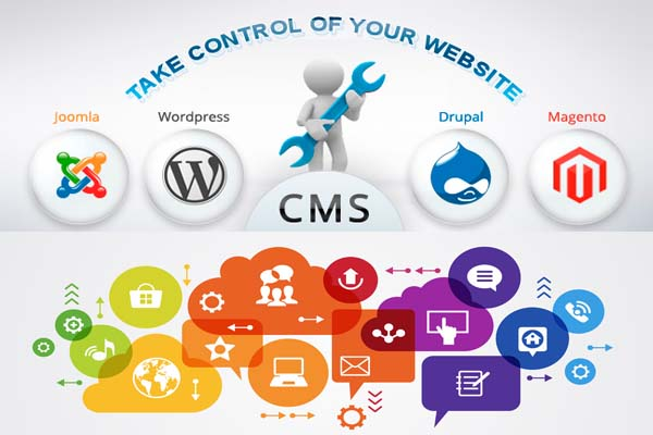 Content Managment Solutions | Self Managed Applications | Every Web Works