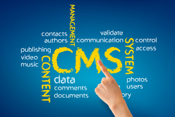 Content Management Solutions | Every Web Works